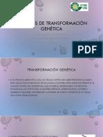 Métodos-de-transformación-genética