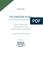 Amazon Fund Working Paper