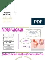 INFECCIONES I (editado para imprimir)