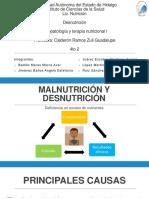 Desnutrición_ResumenF