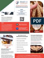 brochure spanish Thirdmill_Seminario_2019
