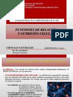 TEMA 6 Funciones de relación y nutrición celular.ppsx
