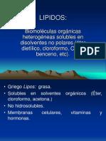 lipidos-2019