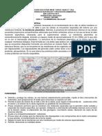 Guia La Celula y Membrana Celular