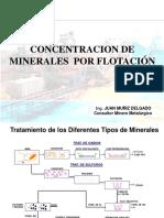 concentracion de minerales 1-2013.ppt