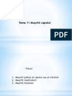 Tema 11 Muşchii capului.pdf