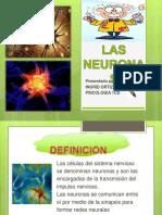 diapositivaslasneuronas-160129054322