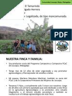 Prsentación -Finca AE -Felipe Salgado-Jucuapa 17oct19 (1)_ultima