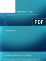 Sistemas reproductores