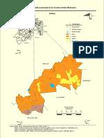 Prontuario de Información Geográfica Municipal