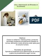 CLASE  ANALISIS (cenizas)  DE MINERALES