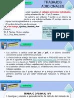 TRABAJOS OPCIONALES.pdf