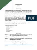 FINAL DE ANTROPOLOGÍA.pdf