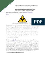 Principais desastres ambientais causados pelo homem no Brasil