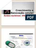 PP1 - DNA_f456106e50dca2df097c5fa80b373a14