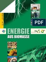 Lehrbuch Energie Aus Biomasse