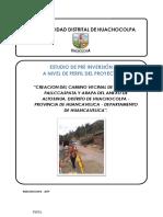 PERFIL HUACHOCOLPA.docx