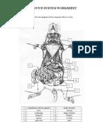 Digestive_System_Worksheet_2013_2