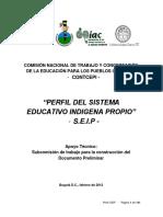CONTCEPI-perfil-SEIP-versionII-2012 (Recuperado).pdf