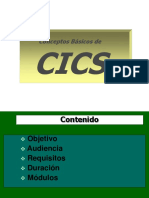 CURSO CICS D&S.ppt