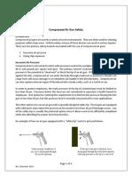 compressed_airgun_information_sheet.docx