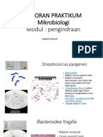 laporan praktikum mikrobiologi.pptx