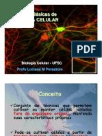 Biologia - Cultura Celular
