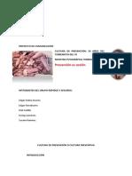 Proyecto AVANCE ULTIMO
