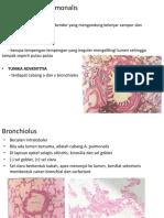 histo bronchus terminalis -saccus.pptx