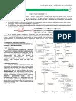 MEDRESUMOS 2014 - BIOQUÍMICA 05 - Vias das pentoses-fosfato