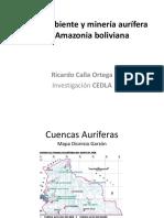 RCalla_oro_y_medio_ambiente