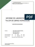 MACRORUGOSIDADES (2).docx