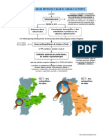 Formação das Grandes Áreas Metropolitanas (11.º)