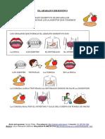 cuerpopordentro-170829114254.pdf