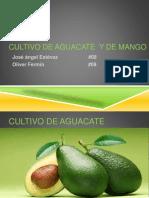 1 PALTO Y MANGO.pdf