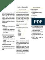 DOMINIO CONCEPTUA1