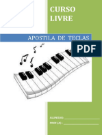 APOSTILA TECLAS CURSO LIVRE