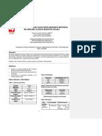 INFORME I ANALISIS ORGANICO denitivo.docx