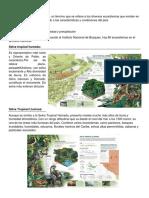 Ecosistemas de Guatemala2.docx