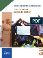la-guia-de-fortalecimiento-institucional_0.pdf
