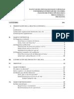 Proyecto de investigacion Dialekta, final..docx