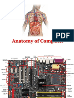 Anatomy of Computer.pptx