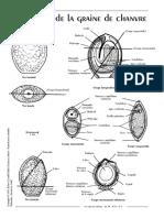 echosn14p7.pdf