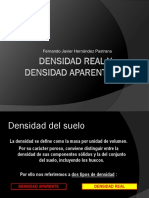 N°4 Densidad Real y Densida Aparente.pptx