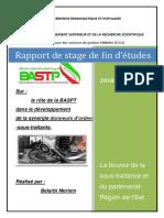 raport-de-stage.pdf
