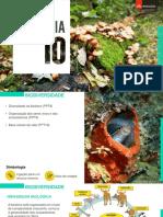 Organização dos seres vivos e dos ecossistemasbio10