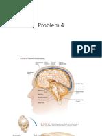 Pemicu 4 cranium