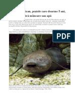 Dipnoiul african, peștele care doarme 5 ani, fără mâncare sau apă.docx