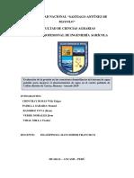 PROYECTO DE DETERMINACION DE PRESIONES DE AGUA POTABLE-COLLON.docx