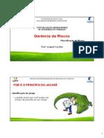 Modulo IV-Classificação de Riscos.pdf